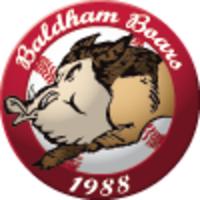 Vereinslogo von Baldham Boars