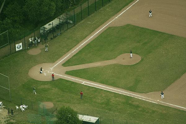 Yaks Field