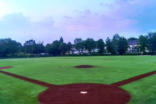 Blackcaps Ballpark